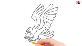 how to draw a hawk step by step easy for beginnerskids simple hawks