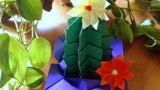 Origami  Cactus 