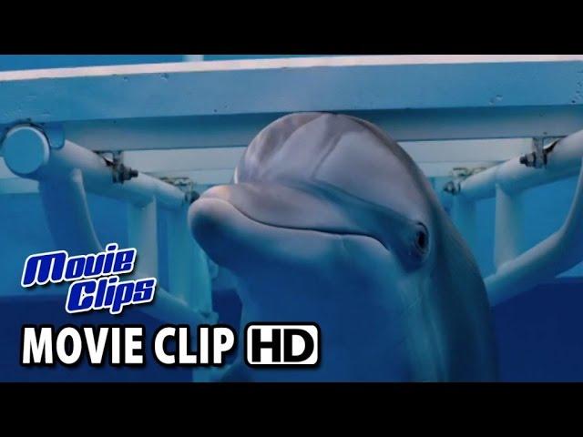 DOLPHIN TALE 2 TV Spot #1 (2014) HD