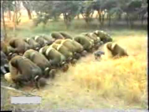 Pakistan Army Song - Qasam Us Waqt Ki By Junaid Jamshed video