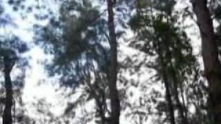 Watch Gary Valenciano Lipad Ng Pangarap video