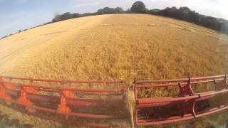 Harvest 2015 - The Full Video