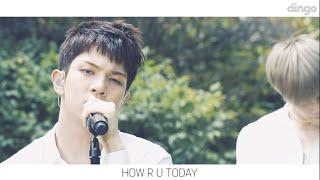 엔플라잉 N.Flying- HOW R U TODAY [BGM ]LIVE 라이브