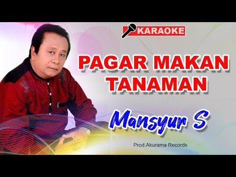 download lagu Mansyur S - Pagar Makan Tanaman gratis