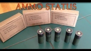 Ammo Status