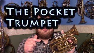 Download Lagu The Pocket Trumpet! Gratis STAFABAND