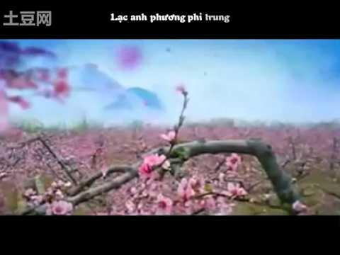 Bi Luo Huang Quan.mp4