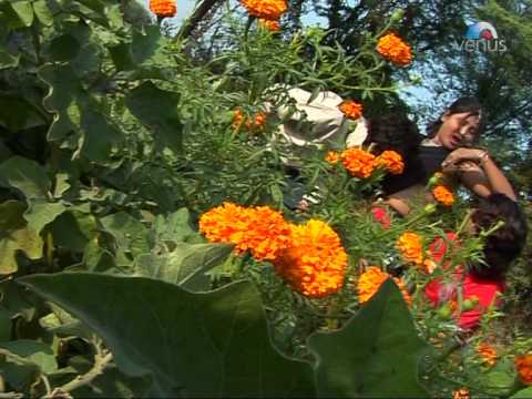 Chhori Boli Saadi Chhe   Rajasthani Sexy Video Songs   Shakuntala Rao video