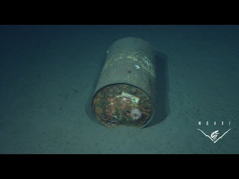 Trash In The Deep Sea: Bringing A Hidden Problem To Light video