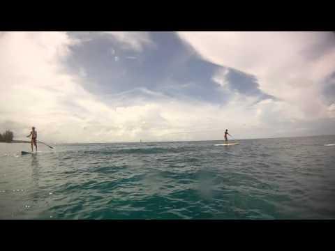 Stand up Paddle em Barbados