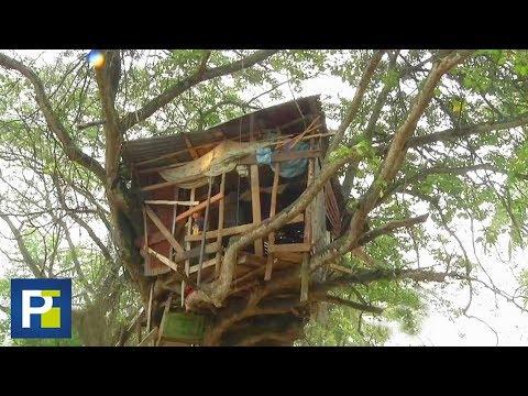 Al no tener donde vivir, esta familia dominicana construyó su casa en un árbol