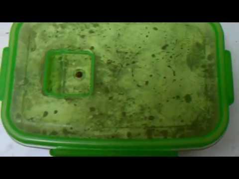 Как приготовить гречку на гарнир - видео