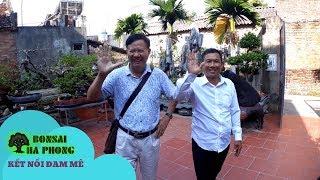 BonsaiHP/ Chú Vinh Nguyen kết cây này rồi có giao dịch được không ?