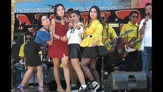 FULL ALBUM Live Sawah Besar Semarang New PANTURA 19 Agusts 2018