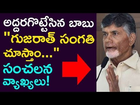 """ We Will See About Gujarat "" Babu Sensational Comments ! 