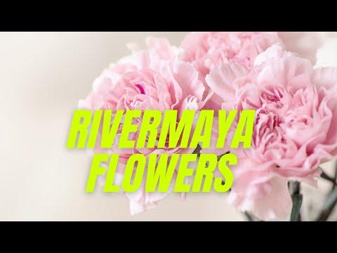 Rivermaya - Flowers
