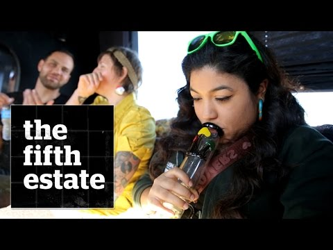 Marijuana tour bus in Colorado - the fifth estate