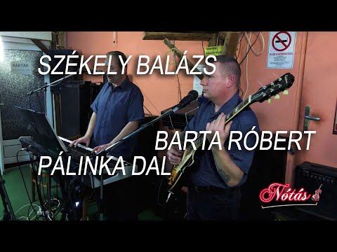 Székely Balázs, Barta Róbert - Pálinka dal