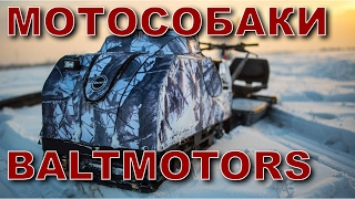 Мотособаки Балтмоторс (Baltmotors)