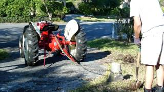 1948 Ford Tractor Pulls Out a Stump (The Wrong Way)