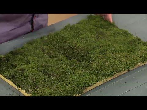 Как из мха сделать коврик для ванны | Ранок з Україною