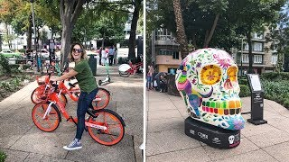 Bike Riding in Mexico City | A Day in the Life