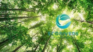 Tổng Quan Dự Án Ecorivers Hải Dương (Ecopark Hải Dương)