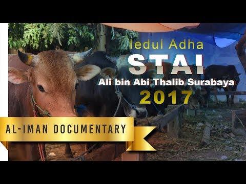 Kegiatan Qurban Idul Adha 1438H di Stai Ali bin Abi Thalib Surabaya