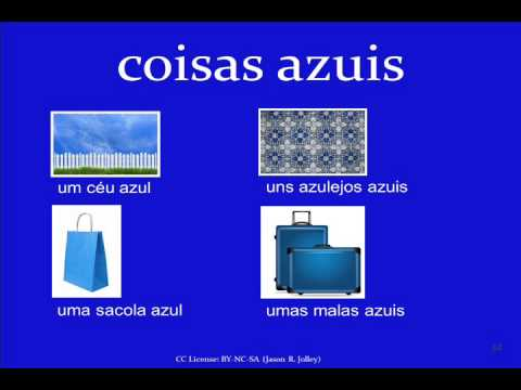 Jump Start Brazilian Portuguese -- Lesson 4 -- Using Nouns and Articles: Objects and Colors