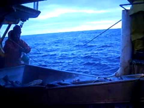 Barco Factortia Puerto Ballena . Pesca Chile