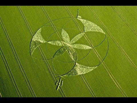 Crop Circle 2012 golden ball hill solsticev3