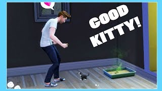 KITTY TOOK HER FIRST POO! THE SIMS 4 PETS