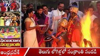 తెలుగు లోగిళ్లలో సంక్రాంతి సందడి | Sankranti Celebrations In AP | TV5News