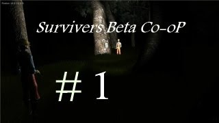 Survivers Beta  Co-oP часть 1
