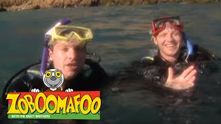 Zoboomafoo 106 - Swimming (Full Episode)