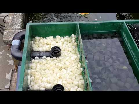 Koi pond box filter setup and a murky pond