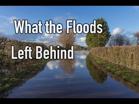 What the Floods Left Behind - SW England Flooding 2014 Documentary By Alex Sadler