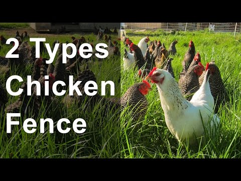 2 Types of Chicken Fence
