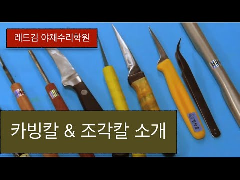 [레드김 야채수리학원]BCA* 카빙칼 & 조각칼 소개