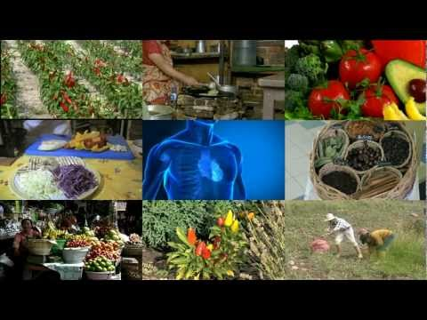 Top 10 Cancer Fighting Foods  Fruits and Vegetables (II)