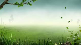 Lullaby Green relaxation music for baby, sleep time (two hours)
