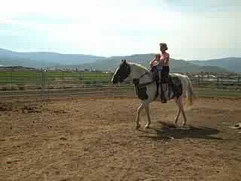 Riding Horses in Heber Video