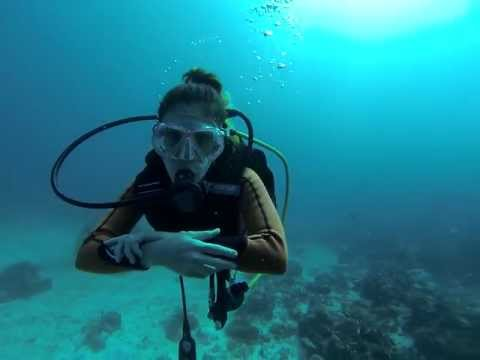 Saint Barth scuba diving HD