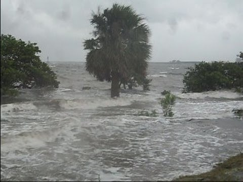 Tropical Storm Debby Tampa Florida