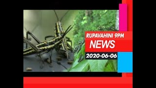 2020-06-06| Channel Eye English News 9.00 pm