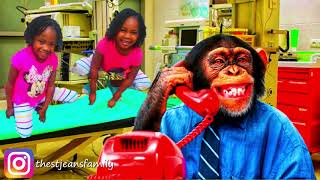 5 lil monkey jumping on the bed  | Nusery Ryhems AND Baby Song