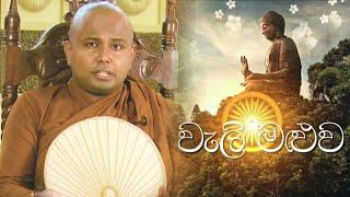 Weli Maluwa - 29 - 11 - 2020 | Siyatha TV