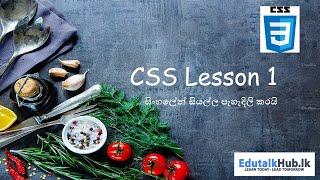 Web Developing CSS Lesson #01(sinhalen)