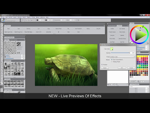 What's New In Corel Painter 2015