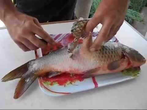 Как варить речную рыбу - видео